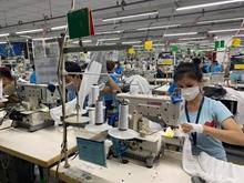 Điểm tựa của hàng triệu lao động bị mất việc làm do dịch Covid-19